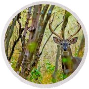 Bambi's Father Round Beach Towel
