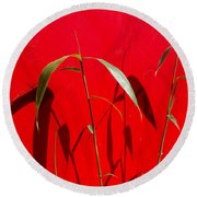 Bamboo Against Red Wall Round Beach Towel