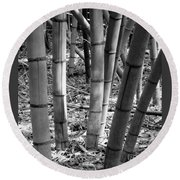 Bamboo In The Shade Round Beach Towel