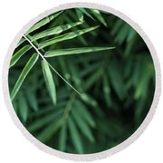 Bamboo Leaves Background Round Beach Towel
