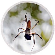 Banana Spider Lunch Time 2 Round Beach Towel