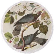 Band-tailed Pigeon  Round Beach Towel