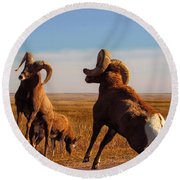 Bang Of The Bighorn Round Beach Towel