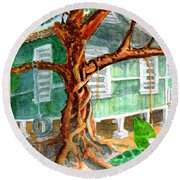 Banyan In The Backyard Round Beach Towel