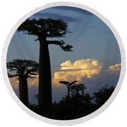 Baobabs And Storm Clouds Round Beach Towel