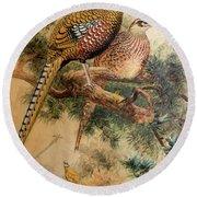 Bar-tailed Pheasant Round Beach Towel
