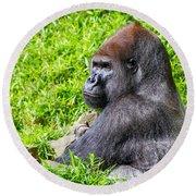 Baraka - Western Lowalnd Silverback Gorilla Round Beach Towel