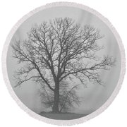 Bare Tree In Fog Round Beach Towel by Nancy Landry