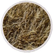Round Beach Towel featuring the photograph Barley by RKAB Works
