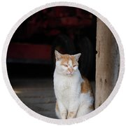 Barn Cat And Tractor Round Beach Towel