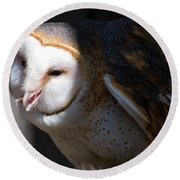 Barn Owl 1 Round Beach Towel
