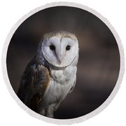 Barn Owl Round Beach Towel