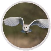Barn Owl Approaching Round Beach Towel