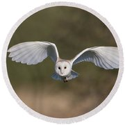 Barn Owl Approaching Round Beach Towel
