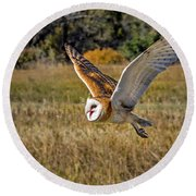 Barn Owl Flight 6 Round Beach Towel