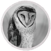 Barn Owl II Round Beach Towel