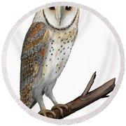Barn Owl Screech Owl Tyto Alba - Effraie Des Clochers- Lechuza Comun- Tornuggla - Nationalpark Eifel Round Beach Towel