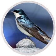 Barn Swallow Round Beach Towel