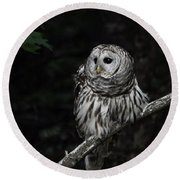 Round Beach Towel featuring the photograph Barred Owl 2 by Glenn Gordon