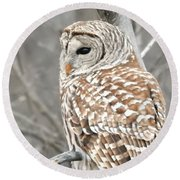 Barred Owl Close-up Round Beach Towel