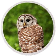 Barred Owl Closeup Round Beach Towel by Peggy Collins