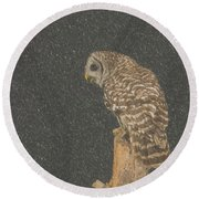 Barred Owl In Snowfall Round Beach Towel