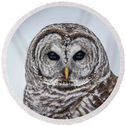Round Beach Towel featuring the photograph Barred Owl by Paul Freidlund