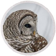 Round Beach Towel featuring the photograph Barred Owl Portrait by Paul Freidlund