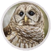 Round Beach Towel featuring the photograph Hoot by Steven Sparks
