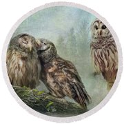 Barred Owls - Steal A Kiss Round Beach Towel