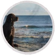 Round Beach Towel featuring the photograph Bask In The Sun by Robin-Lee Vieira