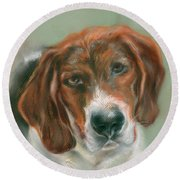 Round Beach Towel featuring the pastel Basset Hound Mix Pup by MM Anderson