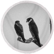 Bat Falcon In Black And White Round Beach Towel