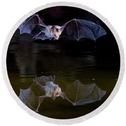 Bat Flying Over Pond Round Beach Towel