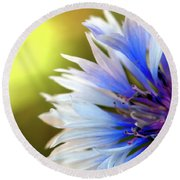 Batchelors Blue And White Button Round Beach Towel