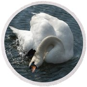 Bathing Swan Round Beach Towel