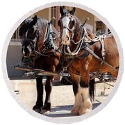 Bay Colored Clydesdale Horses Round Beach Towel