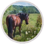 Round Beach Towel featuring the photograph Bay Country by Robin-Lee Vieira