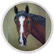 Bay Thoroughbred Horse Portrait Ottb Round Beach Towel