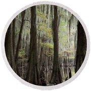 Bayou Trees Round Beach Towel
