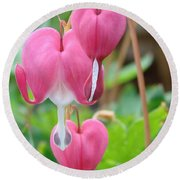 Round Beach Towel featuring the photograph Be Still My Little Bleeding Heart by Margaret Bobb