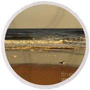 Beach Bird At Sunset  Round Beach Towel