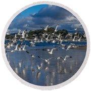Beach Birds Round Beach Towel