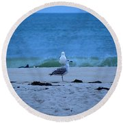 Round Beach Towel featuring the photograph Beach Birds by  Newwwman