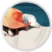 Round Beach Towel featuring the photograph Beach Day For Bubba by Shelley Neff