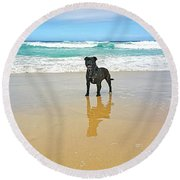 Round Beach Towel featuring the photograph Beach Dog And Reflection By Kaye Menner by Kaye Menner