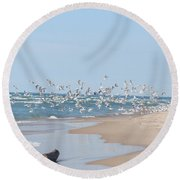 Round Beach Towel featuring the photograph Beach Flight by Nikki McInnes
