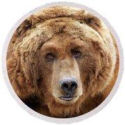 Bear Face Round Beach Towel by Steve McKinzie