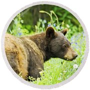 Bear In Flowers Round Beach Towel