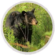 Round Beach Towel featuring the photograph Bear In The Grass by Coby Cooper